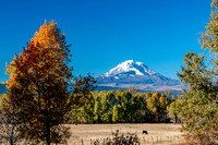 Mt. Adams and Fall Colors 20201029 / アダムス山と紅葉
